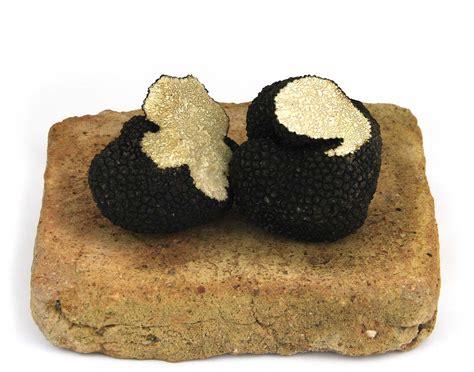 cuisiner les truffes fraiches truffes fraîches d 39 été 200 gr achat vente tuber