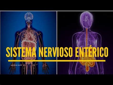 sistema nervioso enterico psicologia youtube