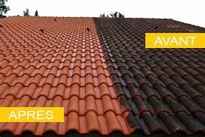 Traitement Anti Mousse : couvreur avignon tous travaux de toiture dans le vaucluse ~ Farleysfitness.com Idées de Décoration