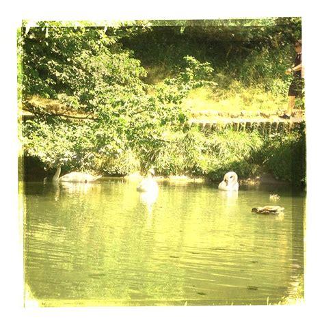 le chalet du lac boulogne cartes postales vintage du lac de boulogne