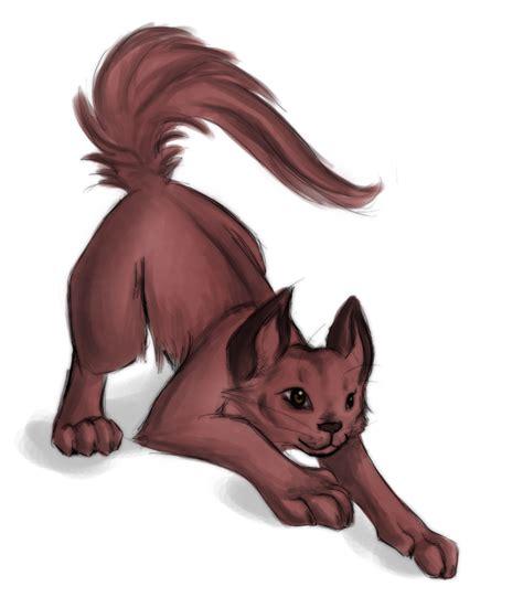 crouching cat  sushiekat  deviantart