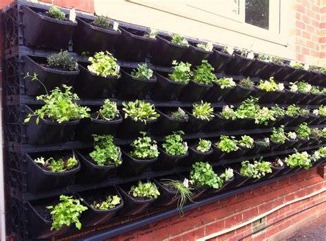 vertical vegetable garden ideas corner