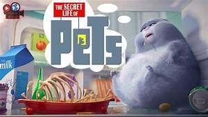 The Secret Life of Pets Wallpapers Images Photos Pictures ...