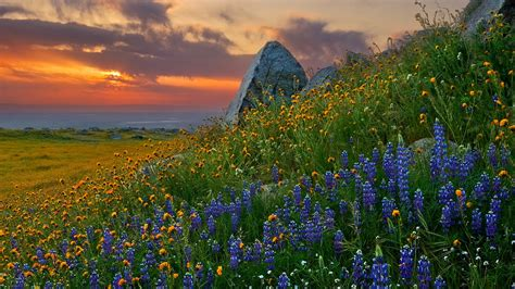 40 Amazing Landscape Wallpapers Full Hd 1920 X 1080 Px
