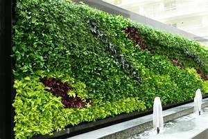 Pflanzenwand Bauen. pflanzenwand selber bauen. pflanzenwand selber ...