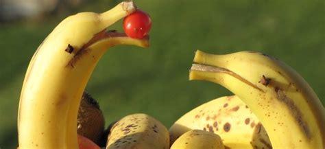 decoration poule pour cuisine comment faire un dauphin banane yopyop ch la cuisine