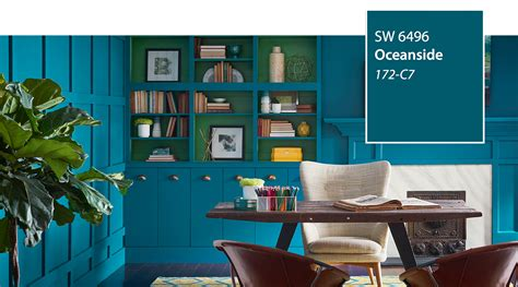 introducing   color   year oceanside sw