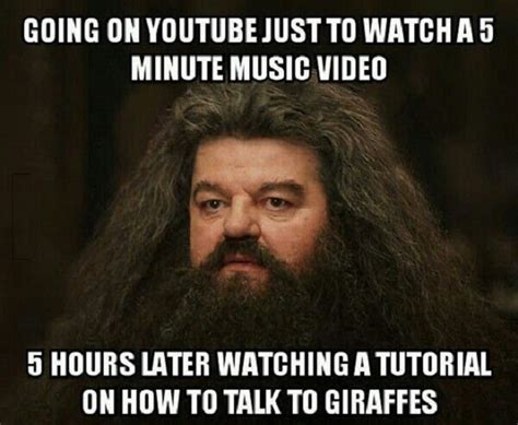 Hagrid Meme - the best 17 youtube channels to subscribe to the best stuff online