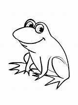 Frog Coloring Pages sketch template