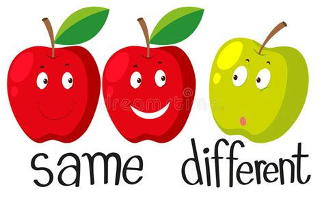 Opposite Adjectives With Same And Different Stock Vector  Illustration Of Illustration, Apples
