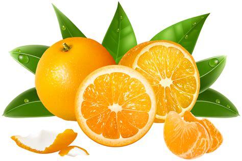 Orange Clipart Transparent