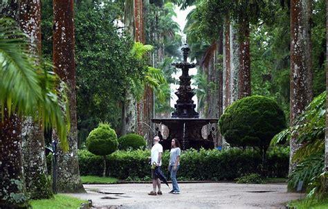 de brazil palm gardens visit ancient de janeiro botanical garden in brazil
