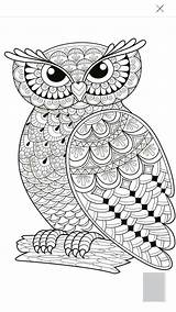 Owl Coloring Dead Girly Amazing Colouring Skull Sugar sketch template