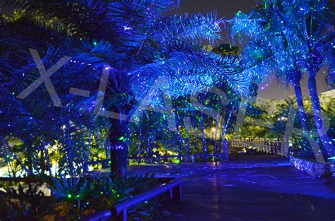 solar laser christmas lights 2016 outdoor christmas meteor shower light star laser