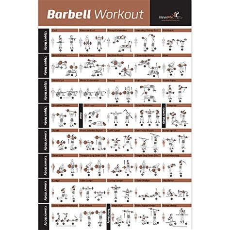 Muscular Charts for Exercise: Amazon.com