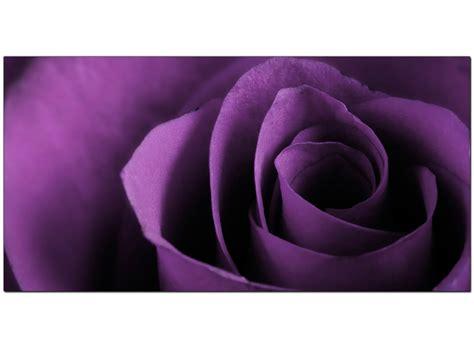 modern purple canvas art rose flower