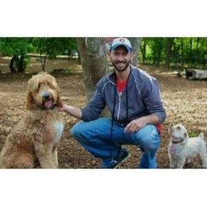 Dog trainer mn minneapolis minnesota 55416 for Dog training mn