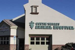 valley animal hospital veterinarian in las vegas nv south valley animal hospital