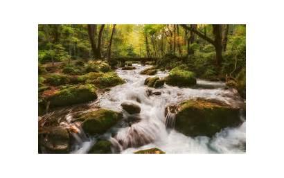 Stream Forest Desktop 4k Background Wallpapers Wide