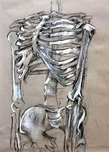 Clara Lieu, Skeleton Drawing Assignment, conte crayon on ...