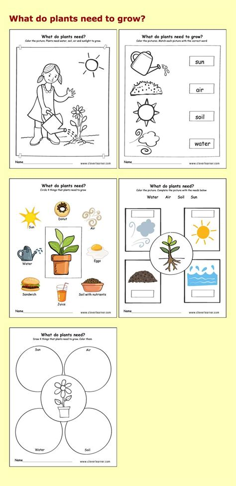 24 best preschool science activity worksheet images on