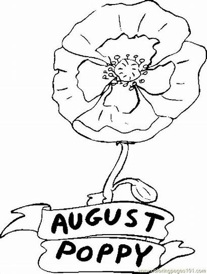 Coloring August Pages Poppy Printable Flower Sheets