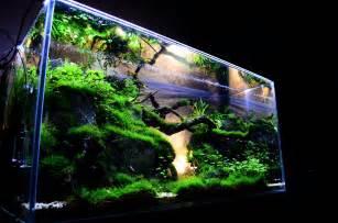 aquarium designer benefits of aquarium fish tanks decoration fish tank best aquarium marine aquarium setup buy