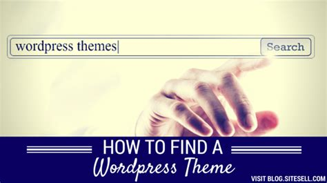 find  wordpress theme solo build  blog