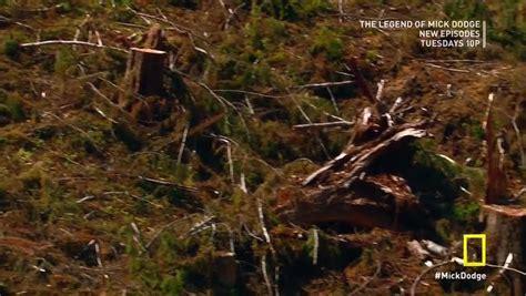 forest siege legend of mick dodge s01e05 forest siege