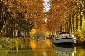 Leboncoin 31 Haute Garonne : photos de haute garonne ~ Dailycaller-alerts.com Idées de Décoration