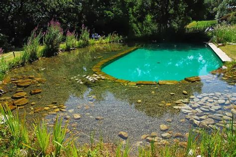 Natural Swimming Ponds Home