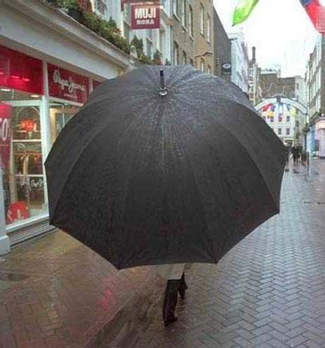 funny pictures big umbrella