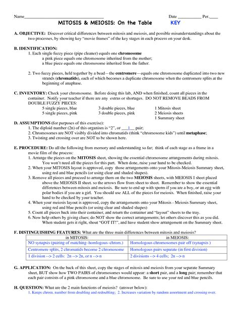 15 best images of meiosis review worksheet biology