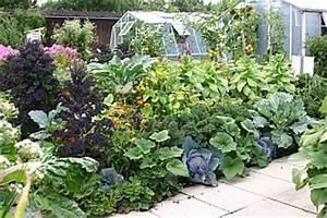 Einfaches Gemüse Für Den Garten : gemuesesorten fuer den garten eine auswahl ~ Lizthompson.info Haus und Dekorationen