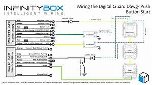 Digital Guard Dawg Ikey  U2022 Infinitybox