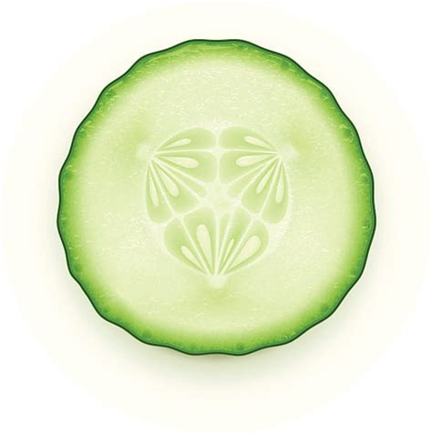 cucumber slice clipart royalty free cucumber clip vector images
