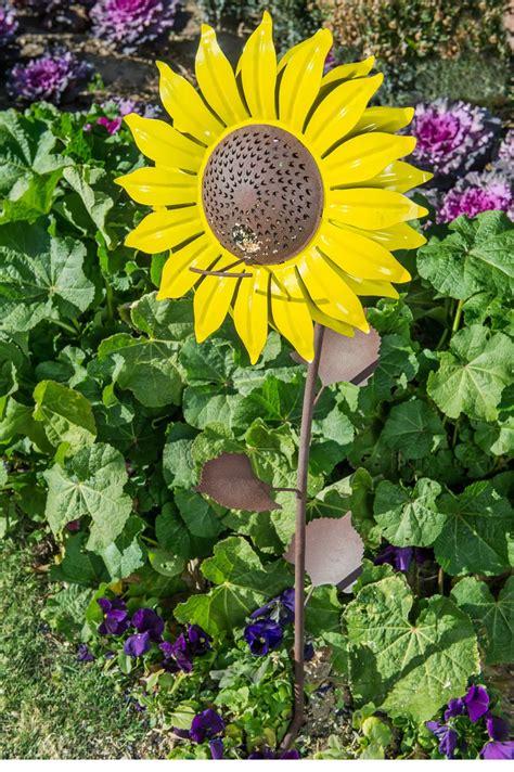 sunflower bird seed driverlayer search engine