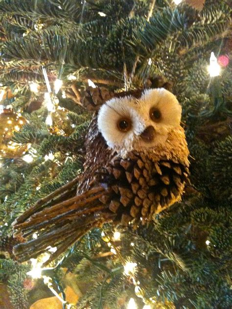 pine cone owl ornaments might try to make this with henry kiddy krafts pinterest pinecone pine cone and pine