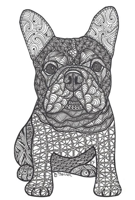 love french bulldog drawing  dianne ferrer