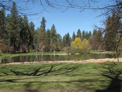 Seattle Wa Spokane Landscape Landscaping Washington Removal