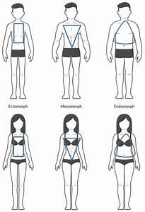 Outer Body Diagram Female