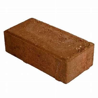 Solid Bricks Brick Matter Transparent Glitter Facts
