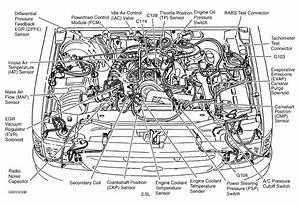 2003 Ford Explorer Engine Diagram : cooling temp sensor location for 2004 ford focus 2 3 liter ~ A.2002-acura-tl-radio.info Haus und Dekorationen