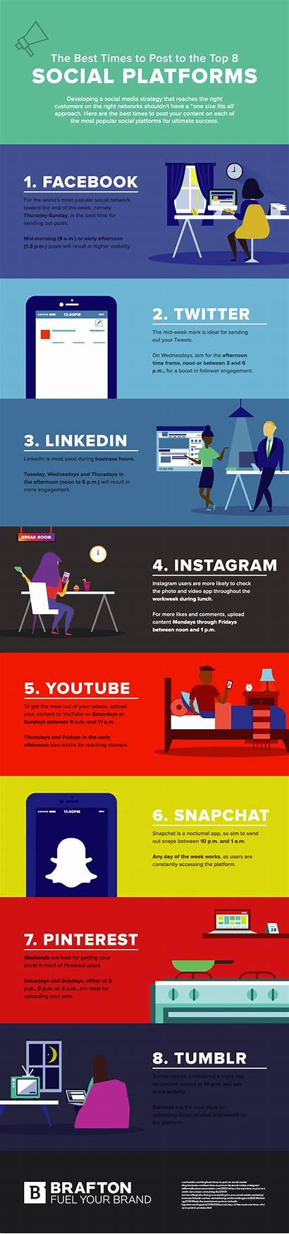 Social Times Infographic Platforms Gifographic Science Networks