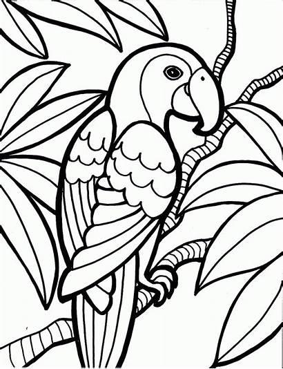 Coloring Pages Tiki Hawaiian Mask