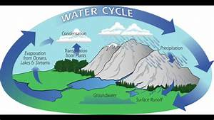 The Water Cycle  5th Grade Learning