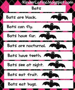 29 Best Images About Bats On Pinterest