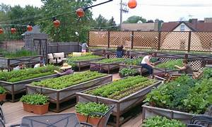 Rooftop Gardening Ideas - [peenmedia com]