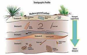 stratigraphy worksheet - Google Search | Geology ...