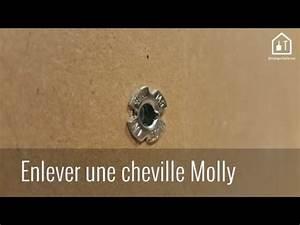 Comment Mettre Une Cheville Molly : astuce bricolage comment extraire une cheville molly ~ Dailycaller-alerts.com Idées de Décoration